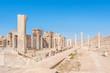 Persepolis complex in north Shiraz, Iran