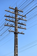electricity post with blue sky.