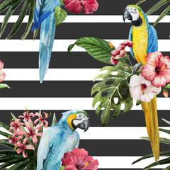 Паттерн, попугай,экзотика