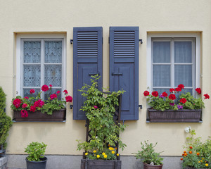 picuresque windows and flowers, Altenburg, Germany