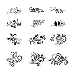 Vector Calligraphic Floral Design Elements