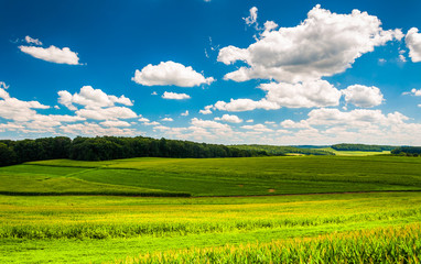 Beautiful summer clouds over fields and rolling hills in Souther