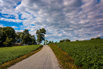 Cloudy sky over a country road and farm fields near Cross Roads,