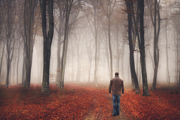 Man walking the trail in a foggy forest during autumn