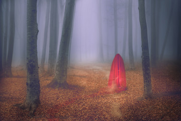 Red figure appears in a foggy day in the forest during autumn
