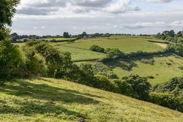 lush countryside near Liskeard, Cornwall