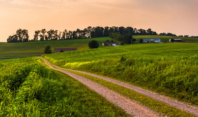Dirt road and farm fields in rural Southern York County, Pennsyl