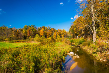 Early autumn color along a creek in rural York County, Pennsylva