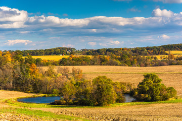 Early-autumn view of a pond in rural York County, Pennsylvania.