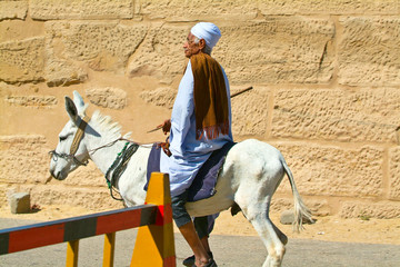 Egypt, Nile Valley, Luxor area, Thebes-Donketyand Rider