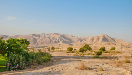 Judean Mountains and desert oasis in Israel