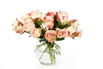 Bouquet of beautiful roses in vase on white background