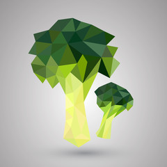 Broccoli geometric