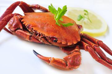 cooked velvet crab
