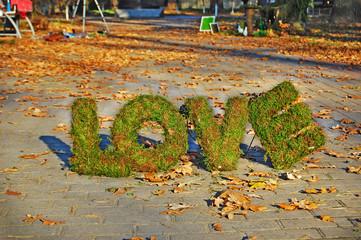 Words LOVE on autumn background. Floristics