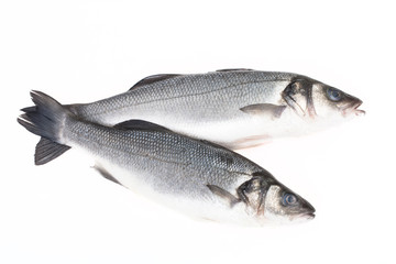 Two fresh fish on a light background.