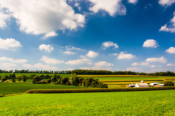 Summer view of rolling hills and farm fields in rural York Count