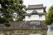 Chiyoda Kokyo (Imperial Palace) in Tokyo, Japan - 75097776