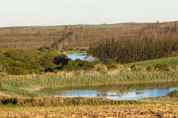 Farming Dams Landscape