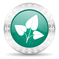 leaf green icon, christmas button, nature sign