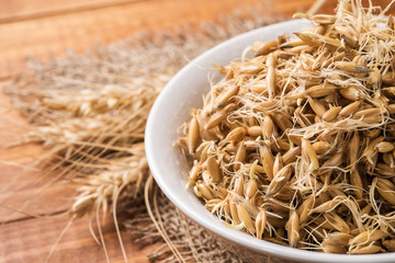 Sprouted grain oats in a bowl on a wooden table with space for t