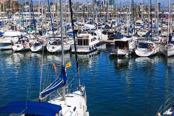 white yachts docked