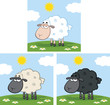 Cute Sheep On A Meadow. Collection Set