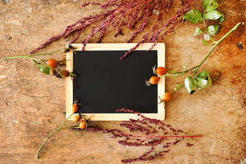 plants with empty chalkboard