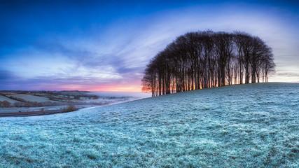 Frosty English Landscape