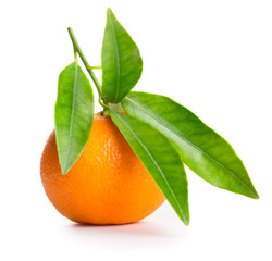Tangerine with green leaves