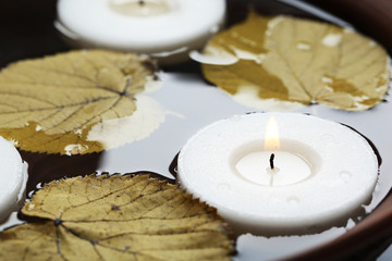 White candles floating with leaves on water in bowl