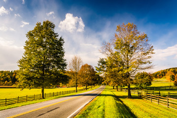 Trees and farm fields along a road in rural York County, Pennsyl