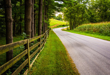 Trees and fence along a dirt road in rural York County, Pennsylv