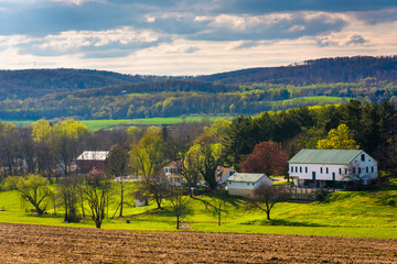 View of a farm and the Piegon Hills in rural York County, Pennsy