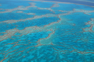 Great Barrier Reef 9 australia