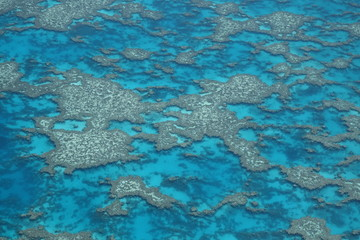 Great Barrier reef 2 australia