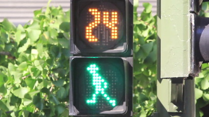 Semaphore lights. Green and red light to pedestrians