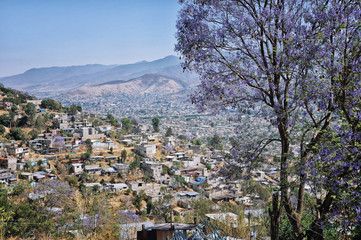 Aerial view of village in Oaxaca