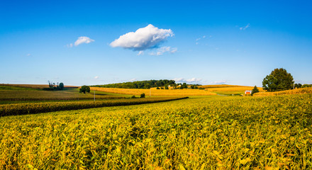 View of farm fields and rolling hills in York County, Pennsylvan