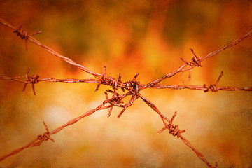 Barbed wire fence on vibrant vintage background