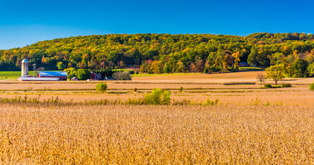 View of farms and hills near Hanover, Pennsylvania.