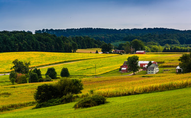 View of rolling hills and farm fields in rural York County, Penn