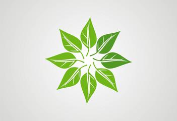 Ecology leaf logo vector