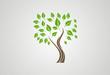 Tree ecology logo vector