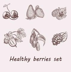 berries set. vector sketches