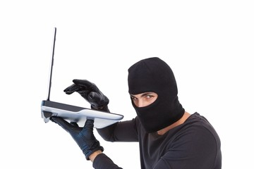 Focused burglar hacking into laptop