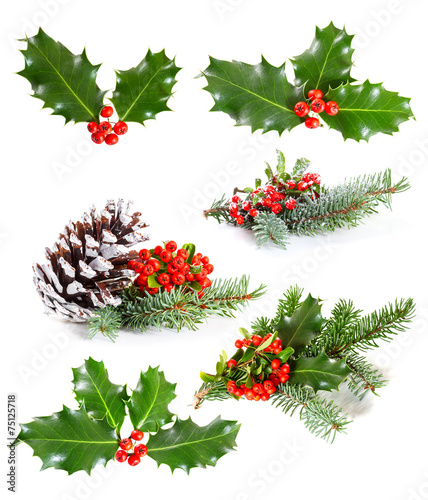 Deurstickers Planten Set of Holly leaves and berries with a pine branch on a white