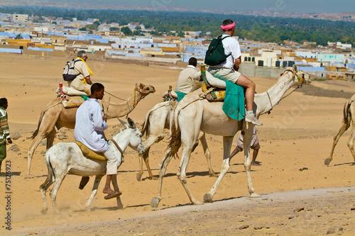 Egypte - Tourists led by camel drivers.Aswan