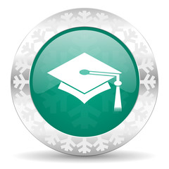 education green icon, christmas button, graduation sign