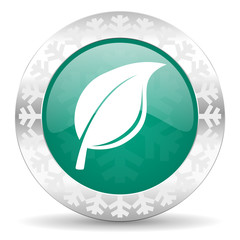 nature green icon, christmas button, leaf sign